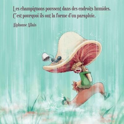 Champignon et parapluie